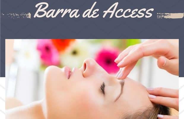 Terapia Holística - 3 Sessões De Barra De Access